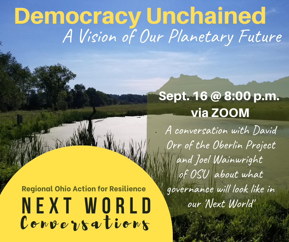 Democracy Unchained: A Vision of Our Planetary Future